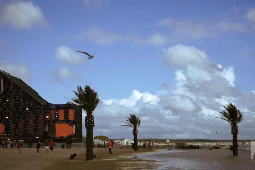 ÕHTULEHE VIDEO | Kui isegi kajakas lendamisega hakkama ei saa, kuidas siis peolised tugevat tuult taluma peaksid?