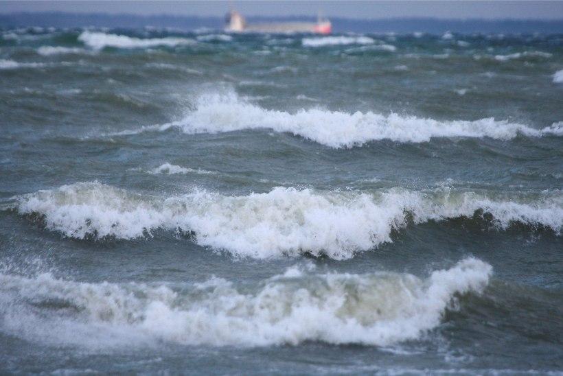 Laevaliiklus on mitmel liinil marutuule pärast rivist väljas