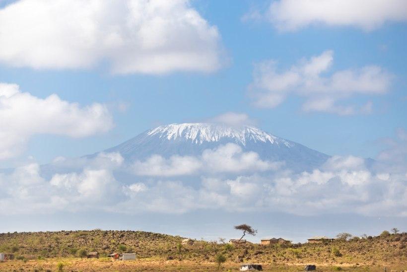 UUS BLOGI: Roniks õige mäkke? Kilimanjarole? JAH!