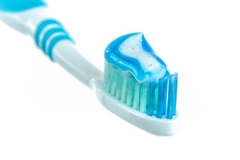 Käekott, hambahari ja telekapult ehk 8 bakteripesa, mis on hirmsamad kui tualetipott