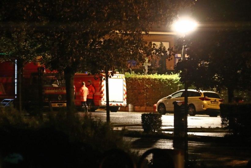 Belgiat šokeeris võigas mõrv: surnuaialt leiti läbilõigatud kõriga Mouscroni linnapea