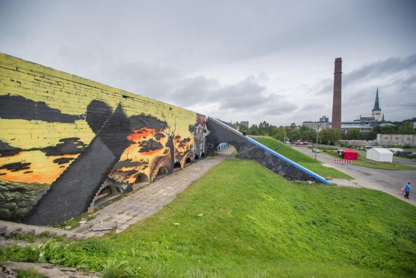 AAS: toetasime linnahalli maalingute ideed, ent mitte seaduserikkumist