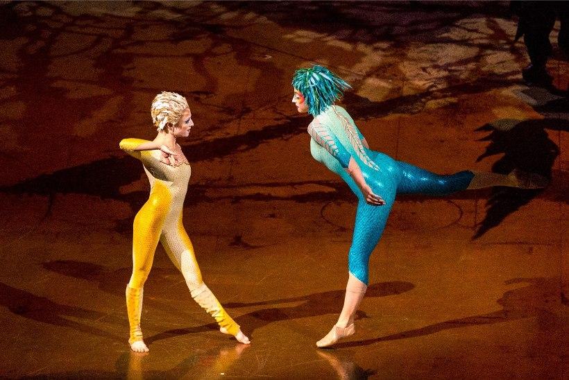 GALERII | Vaata hetki Cirque du Soleil' imelisest etendusest Tallinnas!