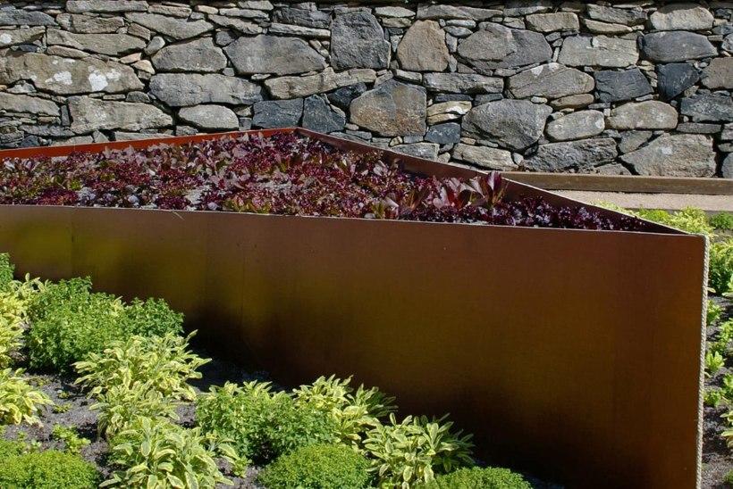Too aeda värvi! Purpursed taimed haljastuses