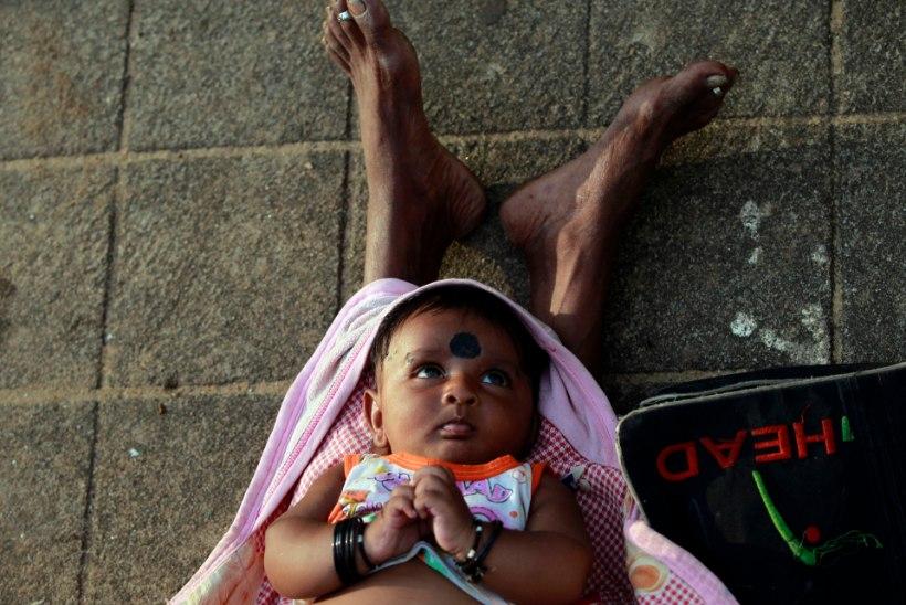 TITERÖÖVID JA BEEBIFARMID: Sri Lanka uurib laste adopteerimisega seotud kuritegevust