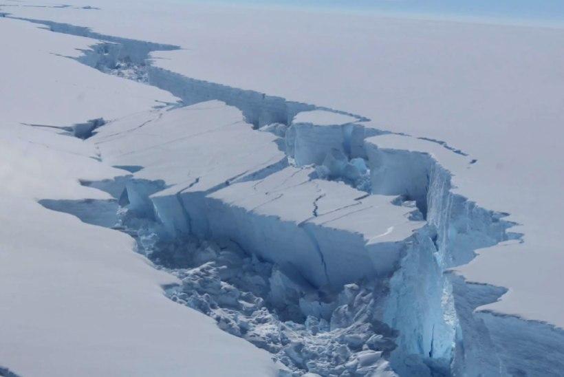 Antarktika küljest murdunud suur jäälahmakas triivib merel