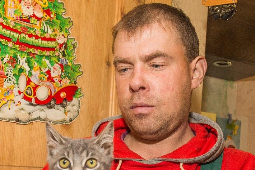 FOTOD | PÕLENGUOHVER: lööklaine paiskas mu pikali ja hirmutas kassi diivani alla!