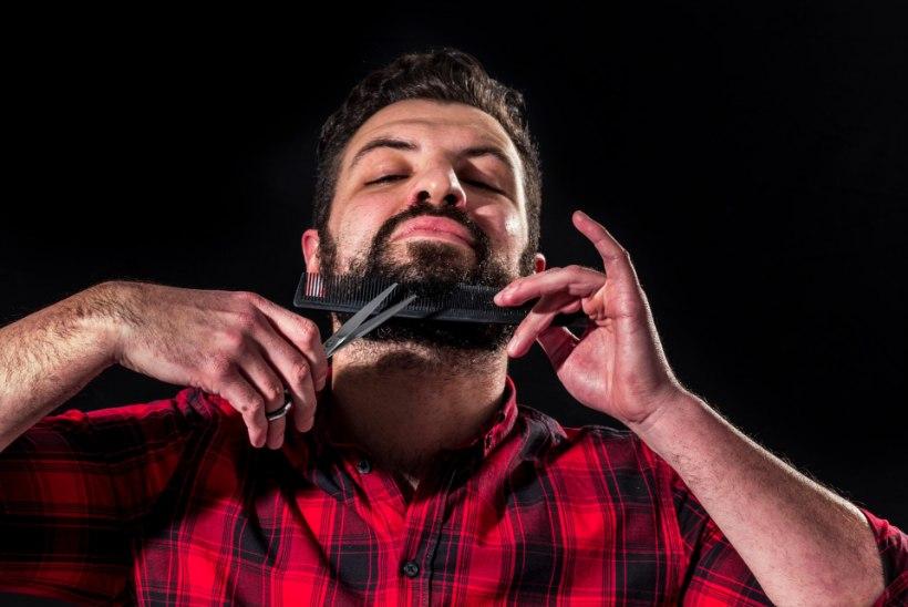 SÜGISELE SOOJALT VASTU: kõik, mida pead teadma habeme ajamisest ja hooldamisest