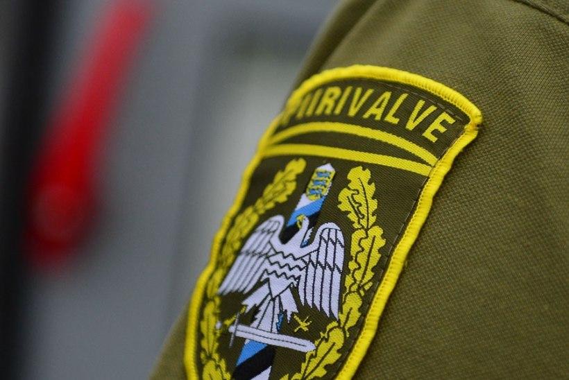 Kohus mõistis politseiametnikule altkäemaksu pakkunud Moldova mehele vangistuse