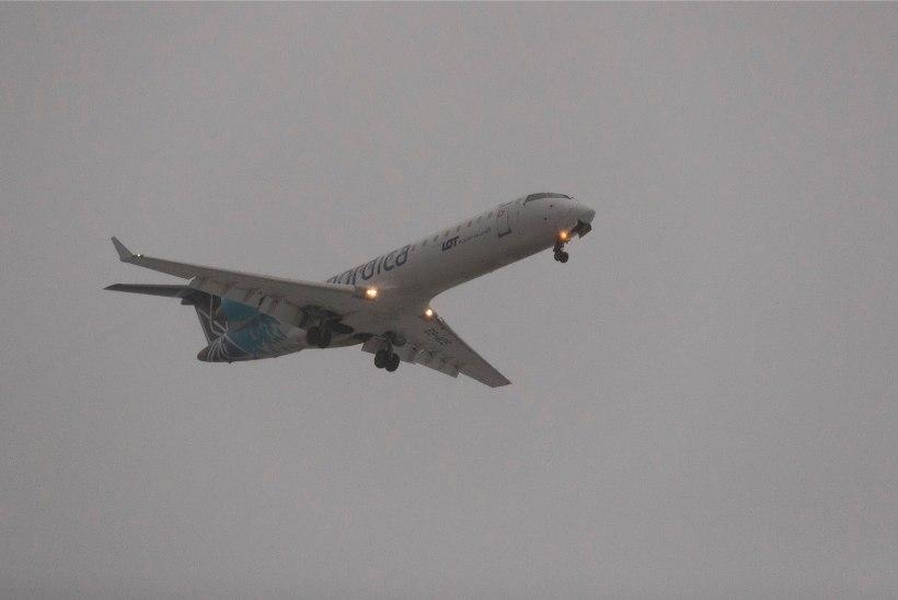 Nordica saatis Tallinnast Horvaatiase väikese lennuki, kuhu kõik reisijad peale ei mahtunud