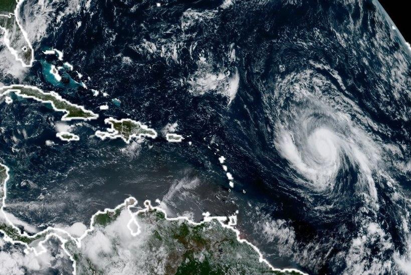 """AMEERIKLASED VÕTAVAD NALJAGA: """"Pange orkaan Irma tulekuks puhurid tööle!"""""""