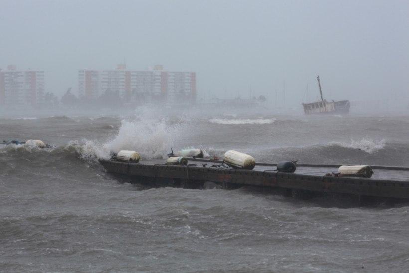 GALERII | Orkaan Irma on võtnud kaks inimelu