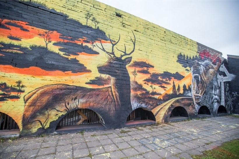 AVALDA ARVAMUST! Kas linnahalli seintele tehtud graffiti tuleks lõpuni teha või maha pesta?