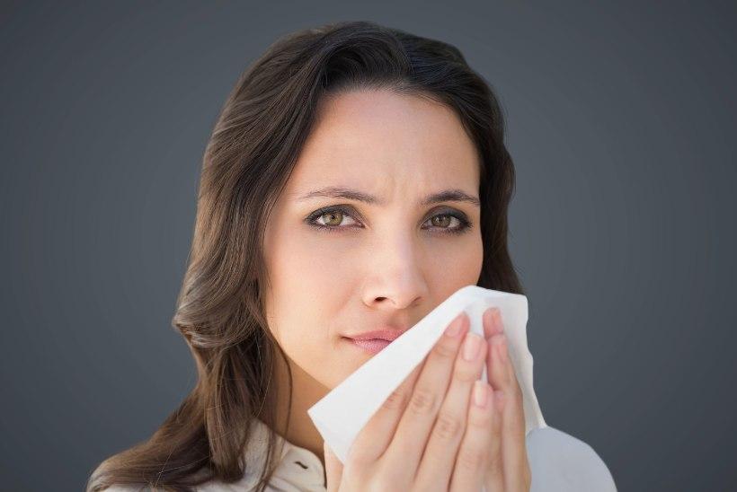 Murrame allergiamüüte!