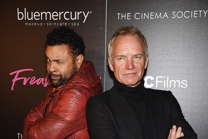 Sting teeb koos Shaggyga reggae-albumit
