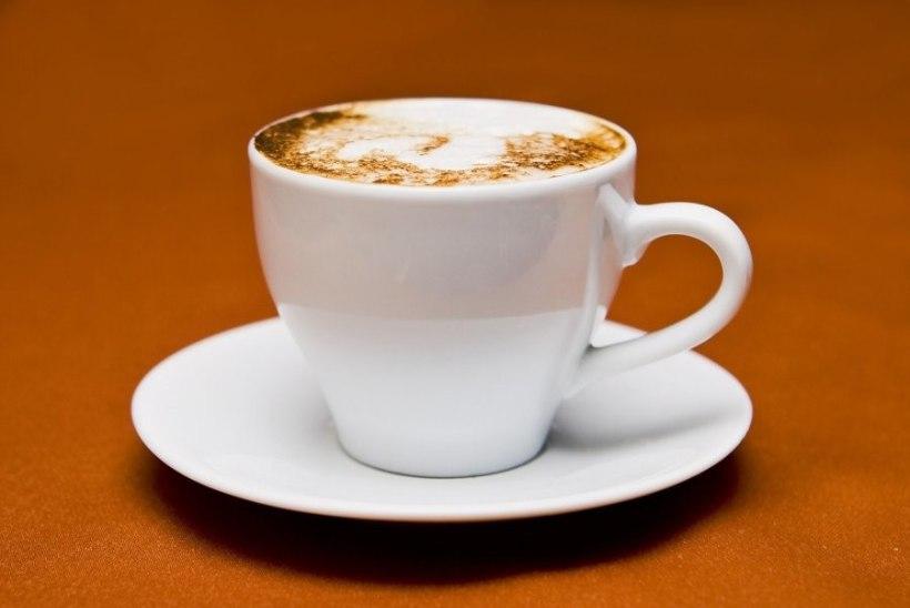 Kas vett on võimalik liiga palju juua? Kas kohv tekitab vähki? TERVISEMÜÜDID SAAVAD VASTUSED!