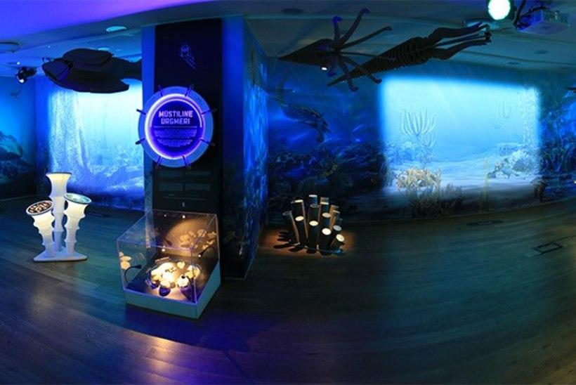VIDEO JA FOTOD   Loodusmuuseum püstitas kõigi aegade külastajarekordi