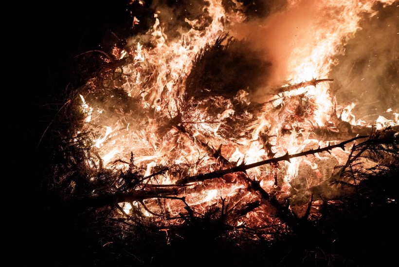 GALERII JA VIDEO | Tallinnas lõõmasid kuuskedest tuleskulptuurid