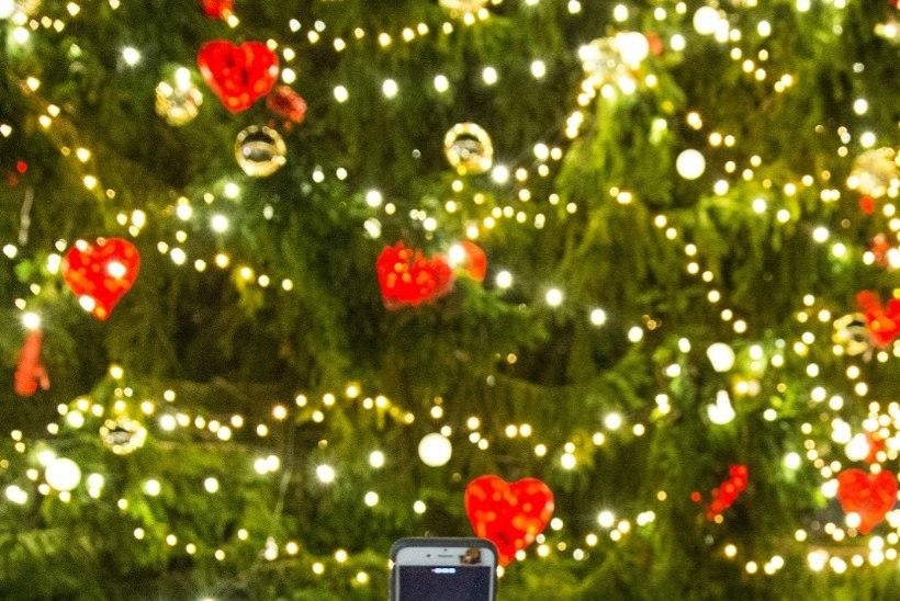 Eesti kauneimaks valitud jõulupuu murdus tormi käes