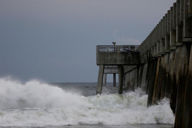 Floridale läheneb koletislik orkaan Michael