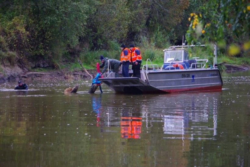 Veeteede Amet puhastas Emajõe Muuge kanalit ohtlikest puudest