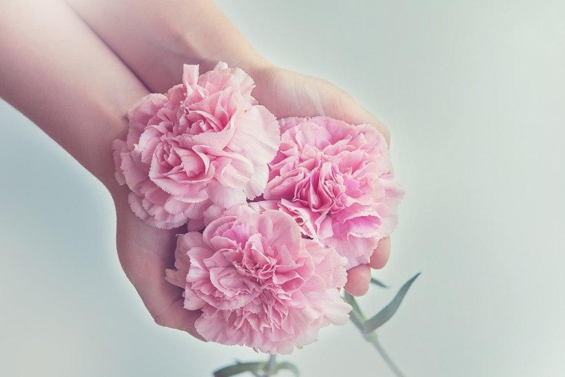 ILU   8 igapäevast harjumust, mis aitavad käed ilusad hoida