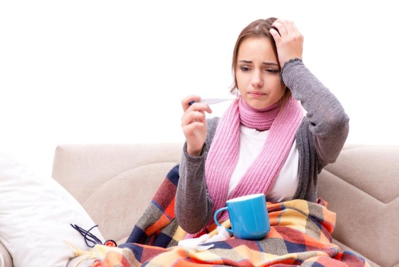 GRIPI KÕRGAEG ON EES: püüa vältida grippi kõigi meetmetega!