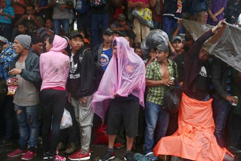 USA-sse on suundumas migrantidest koosnev karavan