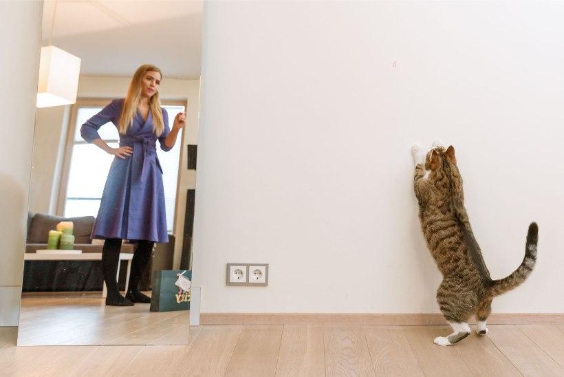 PEHME JA KARVANE | Helen Adamson: kassid on minu hingeloomad