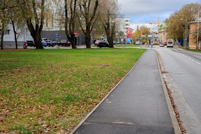 Eakas ühiskonnaaktivist võitles vanurite teenusmaja loomiseks Tallinnalt välja krundi