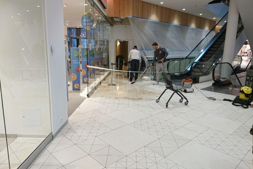 FOTOD JA VIDEOD | Tallinnas Solarise keskuses levis hingemattev lehk