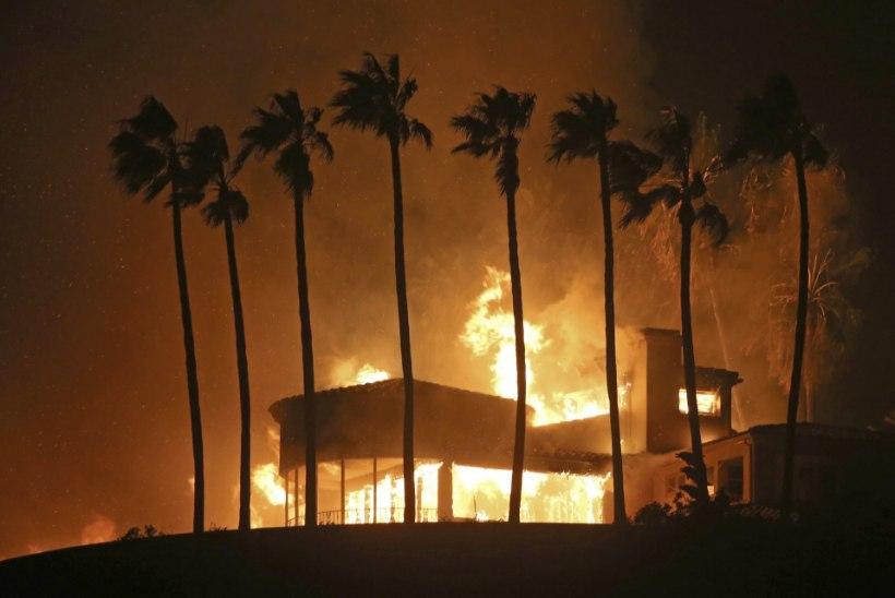 VIDEOD | California metsatulekahjud on pannud staarid evakueeruma