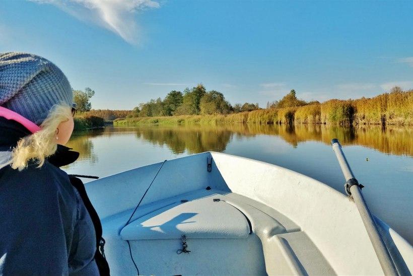 Annika Teinoga elust ja kalandusest