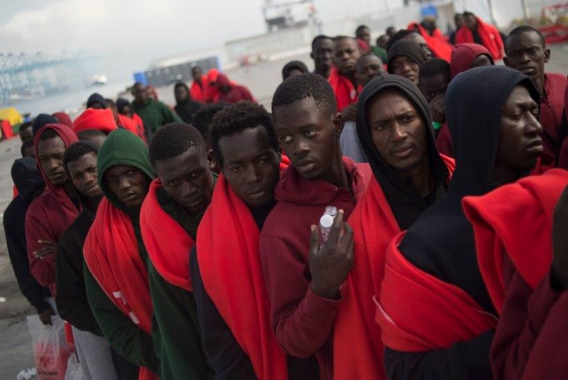 TÜLI MAJAS: maailmas kasvab vastuseis ÜRO rändepaktile