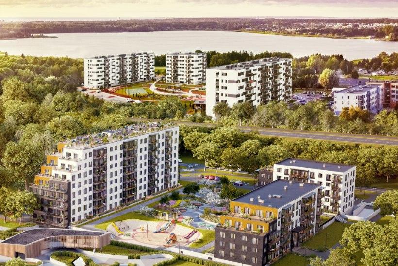 Хааберсти набирает популярность среди покупателей недвижимости