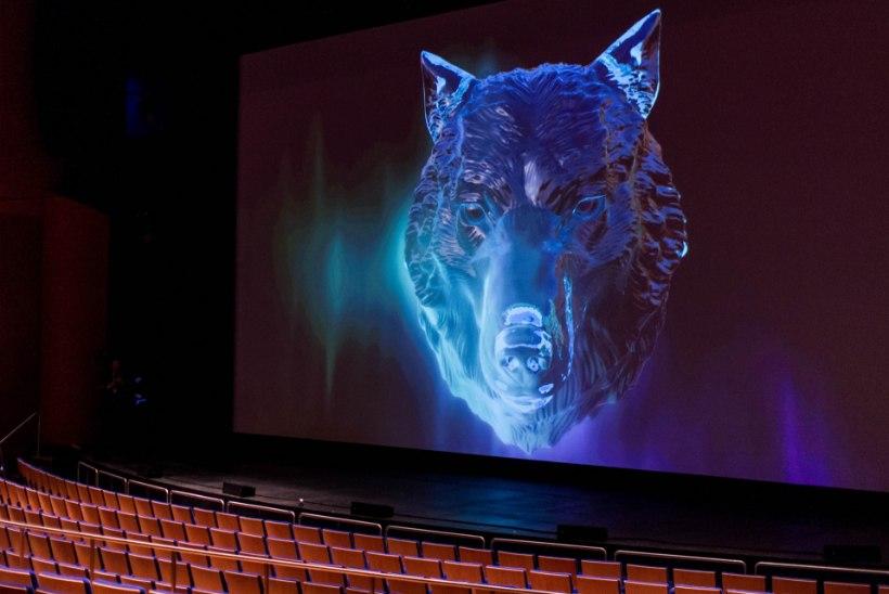 Vaata, millistest filmidest ammutavad inspiratsiooni PÖFF: Black Catwalki moeloojad