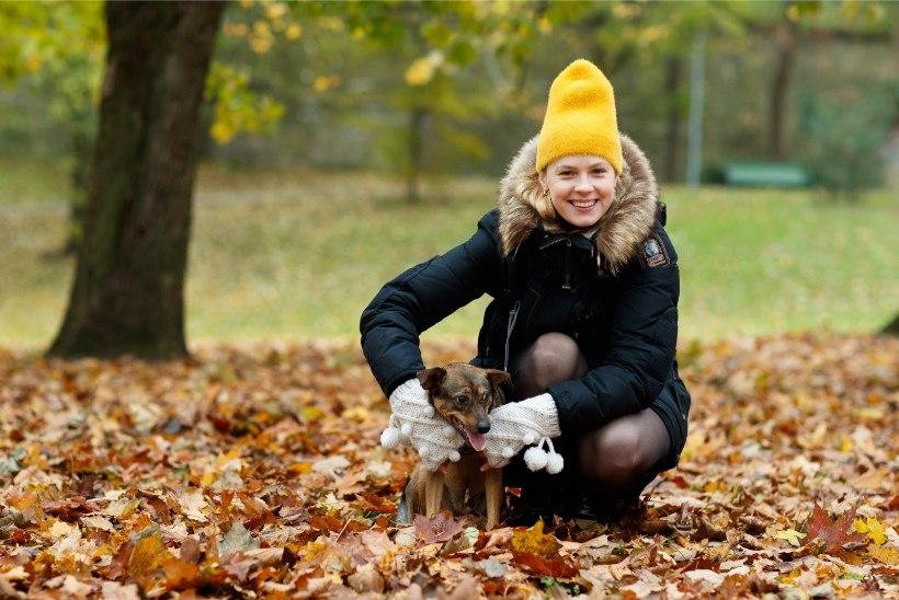 FOTOD | Katrin Lustile anti üle aasta loomasõbralikuma teo auhind