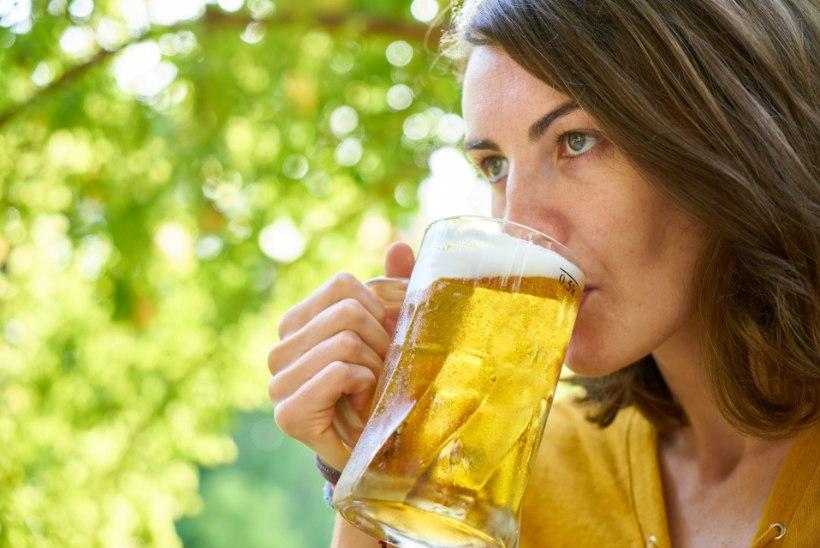 Üllatus: pudel õlut võib maksta tuhandeid eurosid