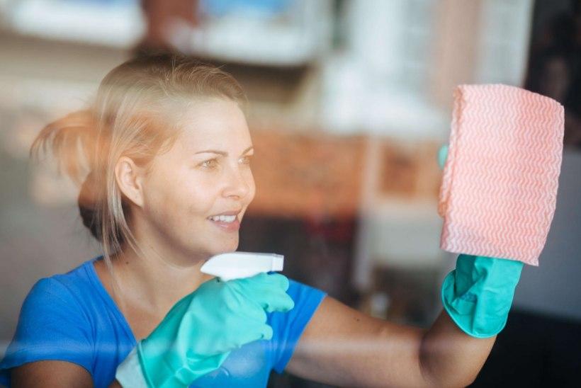 Kui sageli peab puhastama WCd, külmkappi ja teisi olulisi kohti, et bakterid ei rikuks tervist?