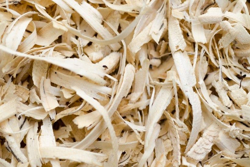 ÄRA VISKA MINEMA: häid nippe saepuru ja höövlilaastude kasutamiseks