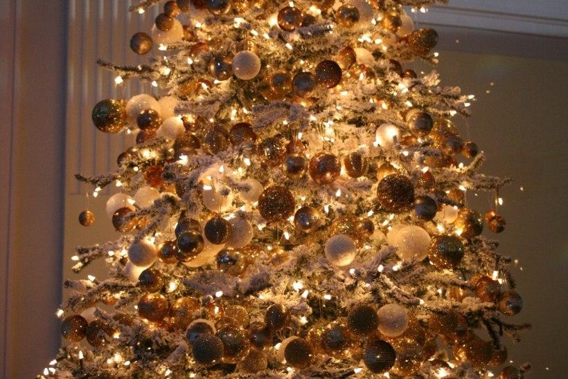 TV3 VIDEO | Niguliste muuseumis särab taas jõulupuu