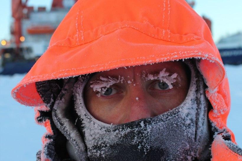 Soome ekspeditsiooni Antarktikasse hakkab juhtima eestlane