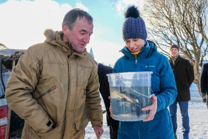 FOTOD   President Kaljulaid tegi midagi ebatavalist!
