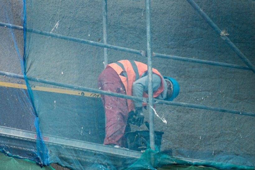 Ehitajate nappus annab Tiidu ja Teedu tüüpi petistele vaid hoogu juurde