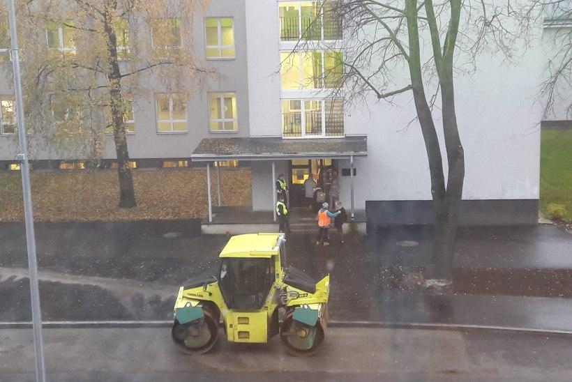 FOTO | Politsei kontrollis Tallinnas koolilaste helkureid