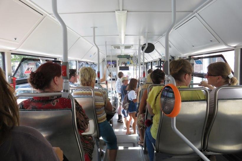 Seisukoht | Bussis on vahva