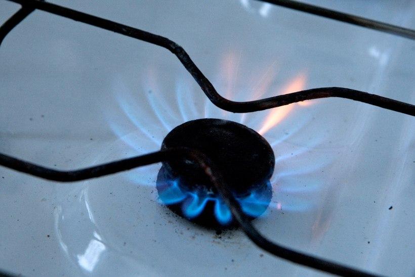 TAASKORD GAAS: Ida-Virumaal avastati möödunud ööpäeval mitu gaasileket