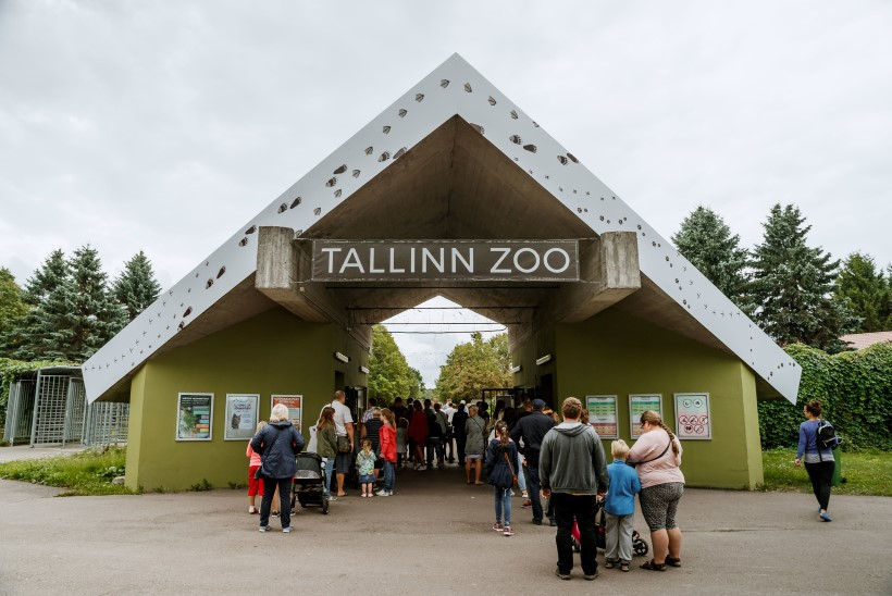 HULLUD AJAD LOOMAAIAS: 90ndatel varastati Tallinna loomaaiast isegi suuri loomi