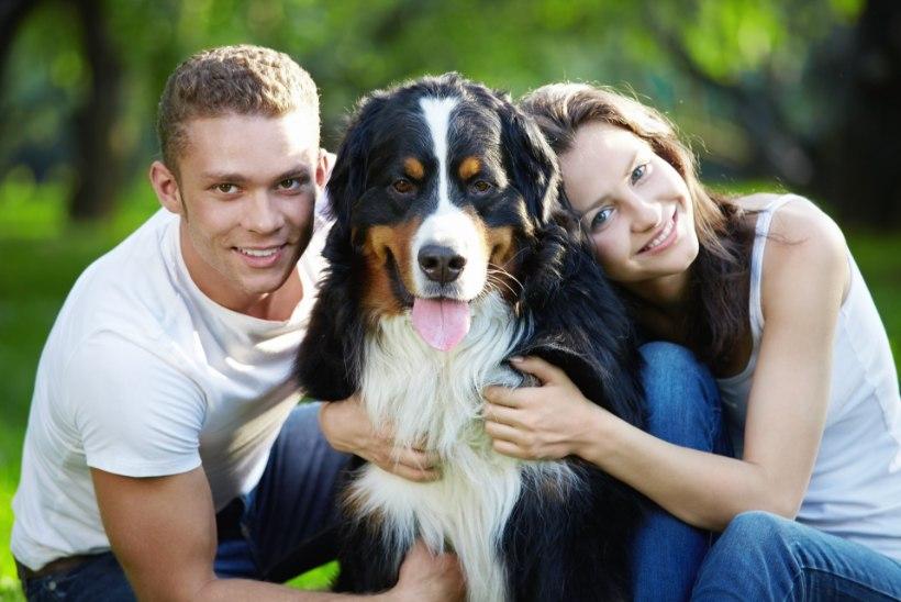 TOO KOER MAJJA 8 olulist põhjust, miks koeraomanikud on teistest õnnelikumad ja tervemad
