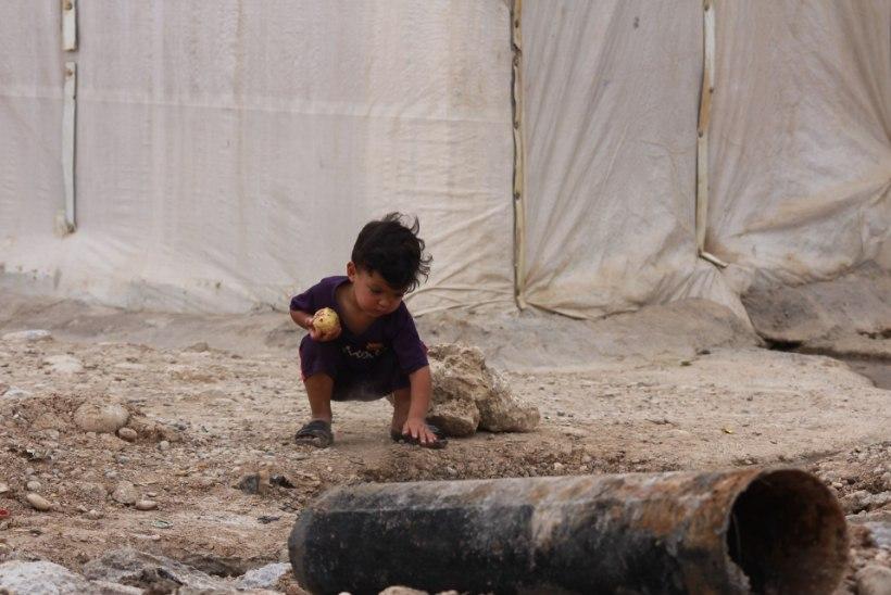 """Eestlane Iraagis: """"Kõikjal ei käi siiski sõda, nagu meedia põhjal tundub."""""""
